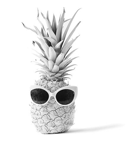 PASaPAS-ananas